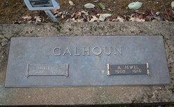 Daniel J Calhoun