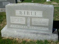 Joseph Bible