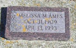 Melissa M. Ames