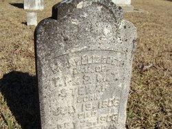 Mary Elizebeth Stewart