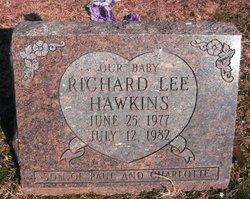 Richard L. Hawkins