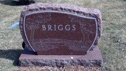 Nancy L <i>Beer</i> Briggs