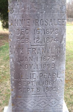 Annie Rosalee Anderson