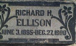 Richard Heber Ellison
