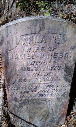 Anna Rebecca <i>Tyler</i> Reed