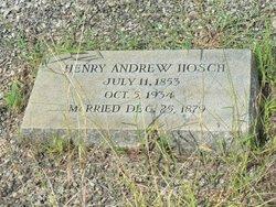 Henry Andrew Hosch