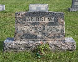 Sarah Ann <i>Koehler</i> Andrew