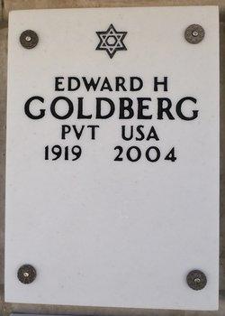 Edward H Goldberg
