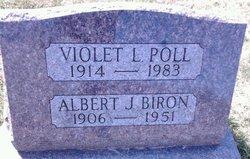 Albert J Biron