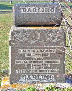 Abigail Mabel <i>Breckenridge</i> Darling