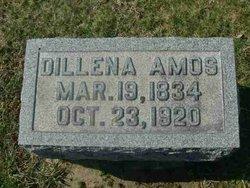 Delina <i>Davis</i> Amos