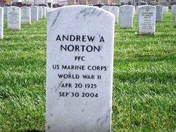 Andrew A Norton
