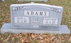 Loyce Elaine <i>Brady</i> Adams