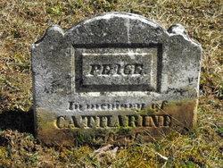 Catherine <i>Peck</i> Brewer