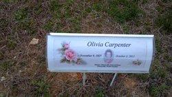 Olivia Lib Carpenter