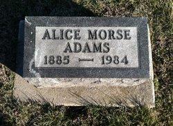 Alice M <i>Morse</i> Adams