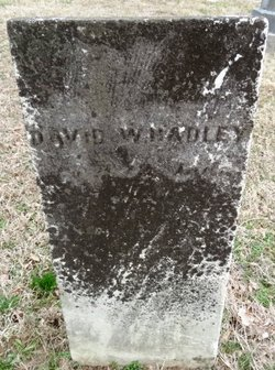 David Walker Hadley