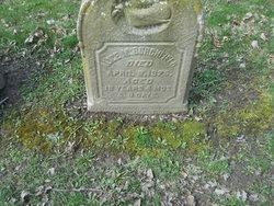Alice M Burchfield