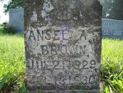 Ansel A Brown