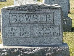 Dorcas Saida <i>Fails</i> Bowser
