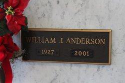 William Junior Anderson