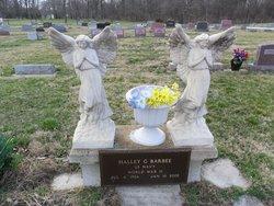 Halley G. Barbee