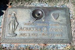 Agricola O. Anaya