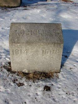 Annie D Holland