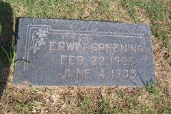 Erwin Greening