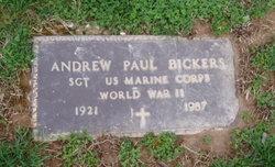 Andrew Paul Bickers
