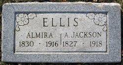 Almira <i>Brewster</i> Ellis