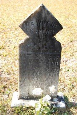 Mary E. <i>Williams</i> Brewer