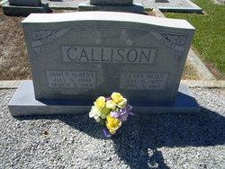Clarissa Emily Clara <i>Dorn</i> Callison