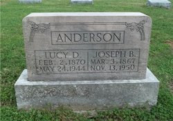 Lucinda <i>Davis</i> Anderson