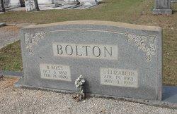 Sarah Elizabeth <i>Martin</i> Bolton