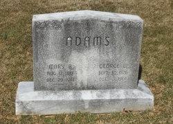 Mary B Minnie <i>Young</i> Adams