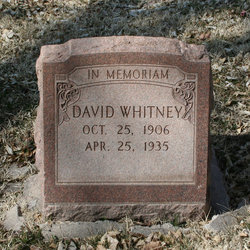 David P Whitney