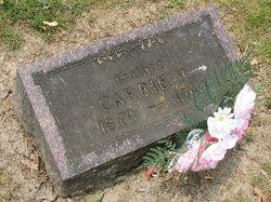 Carrie Rose <i>Deininger</i> Stienstra