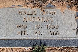 Hollis Leone Andrews