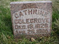 Catherine <i>Corey</i> Colegrove