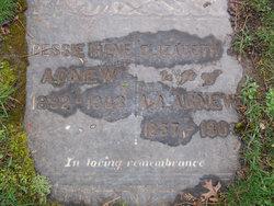 Bessie Irene Agnew