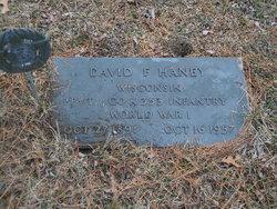 David F Haney