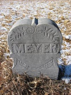 Unnamed Meyer Children