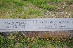 Alvin Big Sam Wells