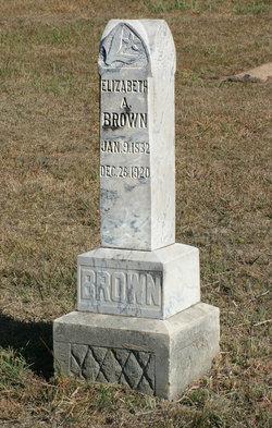Elizabeth Ann <i>Morris</i> Brown