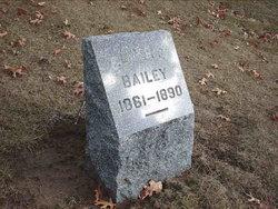 Almer E. Bailey