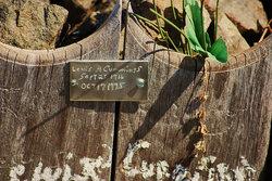 Dominion Peak Gravesite