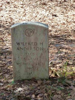 Wilfred H Anderson