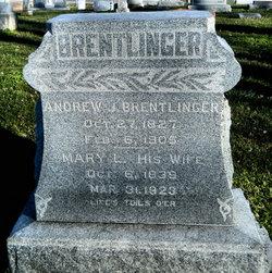 Andrew J Brentlinger