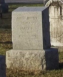 Jacob Burger